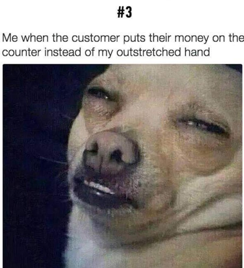 """Caption that reads, """"Me when the customer puts their money on the counter instead of my outstretched hand"""" above a pic of a little dog looking annoyed"""