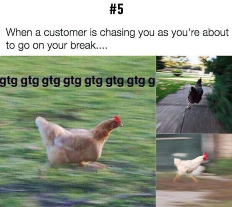 Chicken - #5 When a customer is chasing you as you're about to go on your break... gtg gtg gtg gtg gtg gtg gtg g