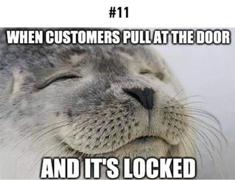 Mammal - #11 WHEN CUSTOMERS PULLATTHE DOOR AND ITS LOCKED
