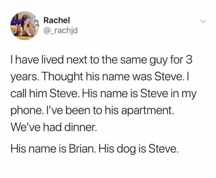 twitter fun - Text - Rachel @rachjd Ihave lived next to the same guy for 3 years. Thought his name was Steve.I call him Steve. His name is Steve in my phone. I've been to his apartment. We've had dinner. His name is Brian. His dog is Steve.