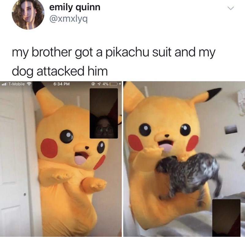 "Caption that reads, ""My brother got a Pikachu suit and my dog attacked him"" above pics of a dog attacking a guy in a Pikachu suit"
