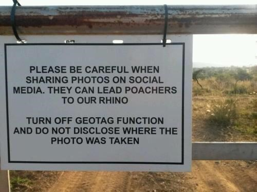 Text - PLEASE BE CAREFUL WHEN SHARING PHOTOS ON SOCIAL MEDIA. THEY CAN LEAD POACHERS TO OUR RHIN TURN OFF GEOTAG FUNCTION AND DO NOT DISCLOSE WHERE THE PHOTO WAS TAKEN