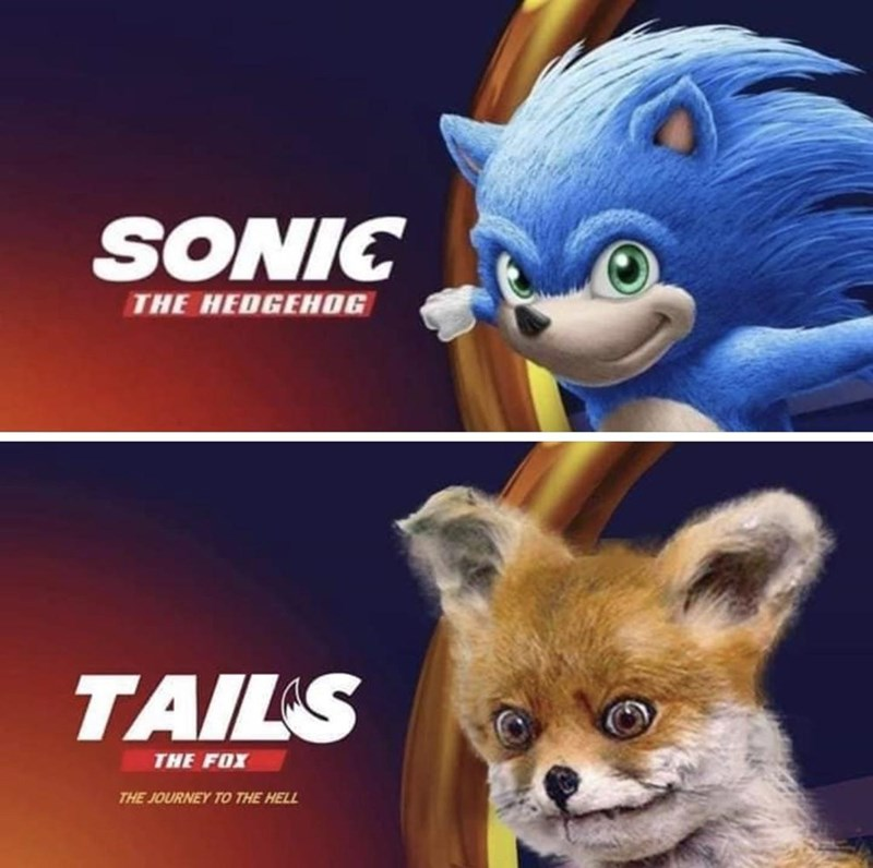 picture of sonic the hedgehog and stoned fox SONIC THE HEDGEHOG TAILS THE FOX THE JOURNEY TO THE HELL