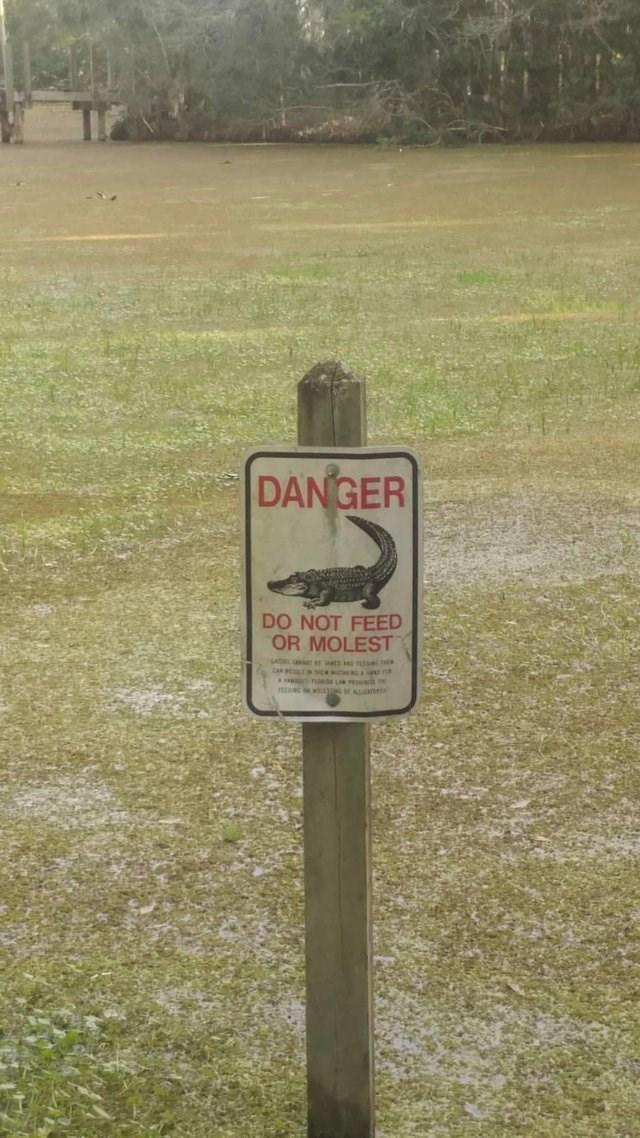 Sign - DANGER DO NOT FEED OR MOLEST