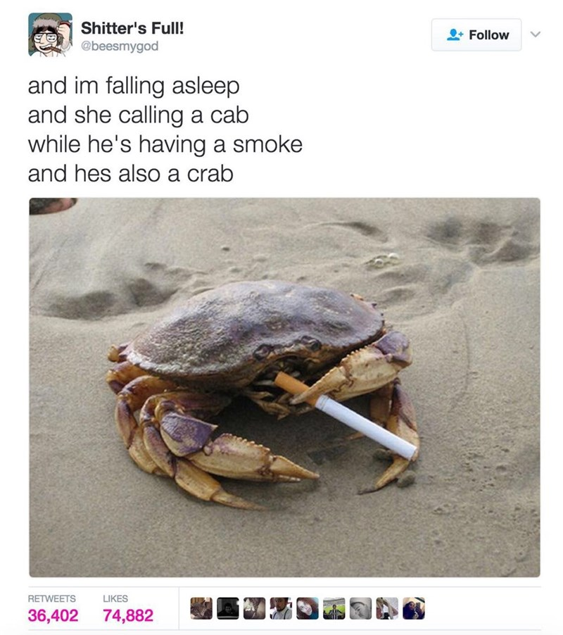 "Caption that reads, ""And I'm falling asleep and she's calling a cab while he's having a smoke and he's also a crab"" above a pic of a crab smoking a cigarette"