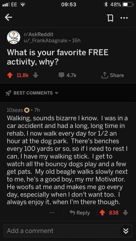 wholesome memes about walking being a favorite activity