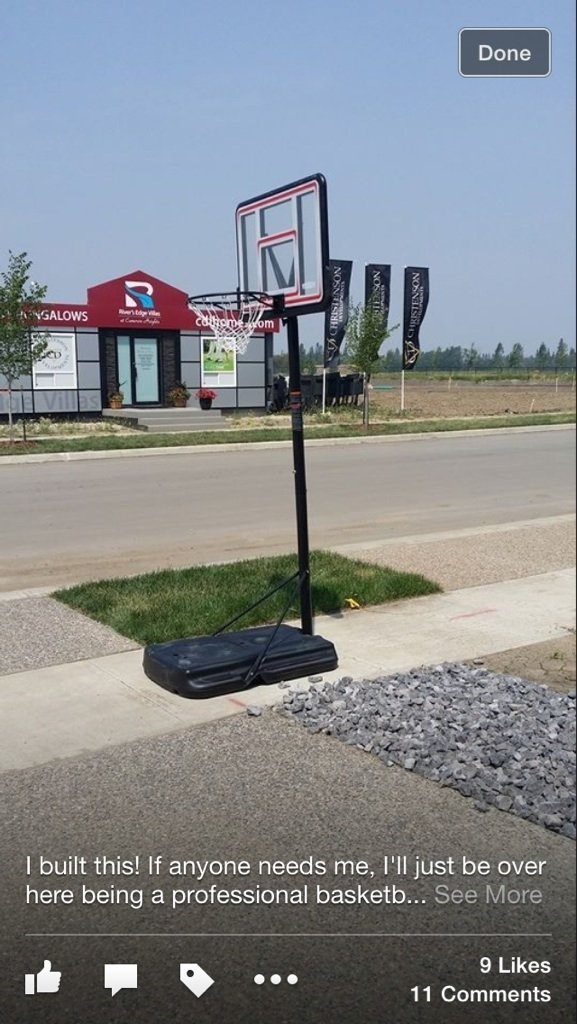 facepalm - Basketball hoop - Done tdgeill NGALOWS Catomeom I built this! If anyone needs me, l'll just be over here being a professional basketb... See More 9 Likes 11 Comments