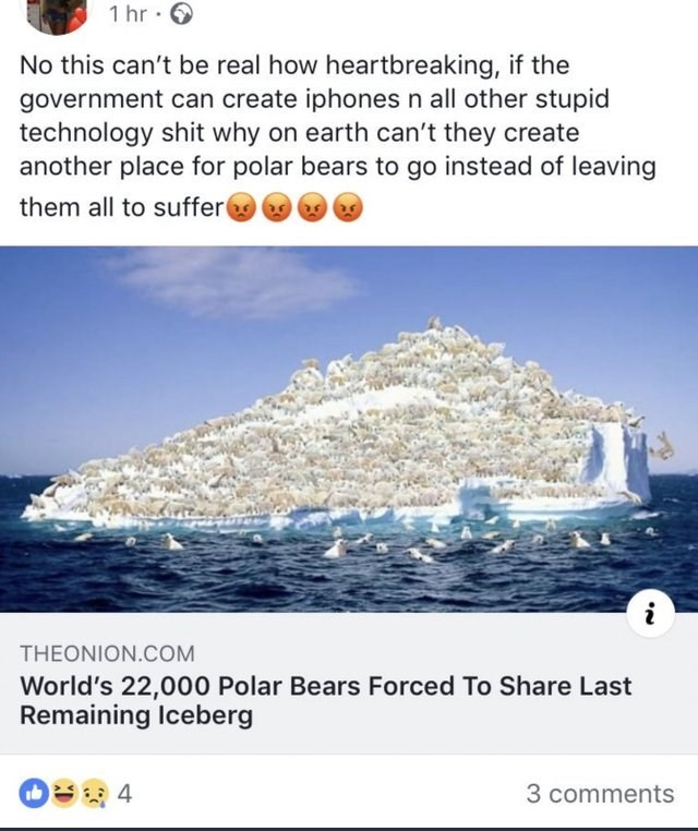 Product - 1 hr No this can't be real how heartbreaking, if the government can create iphones n all other stupid technology shit why on earth can't they create another place for polar bears to go instead of leaving them all to suffer THEONION.COM World's 22,000 Polar Bears Forced To Share Last Remaining Iceberg 3 comments