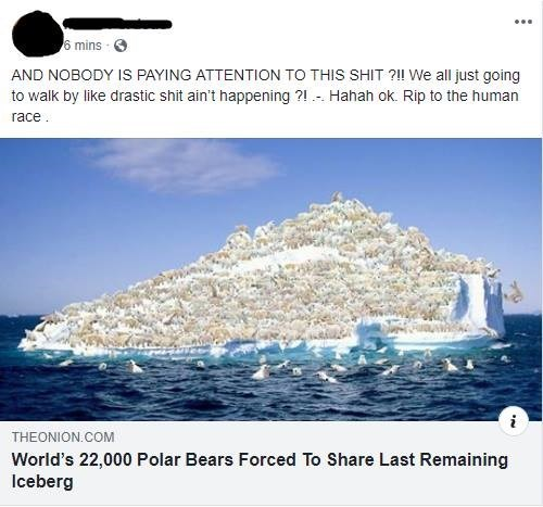 Product - 6 mins AND NOBODY IS PAYING ATTENTION TO THIS SHIT ?!I We all just going to walk by like drastic shit ain't happening ?1 Hahah ok. Rip to the human race THEONION.COM World's 22,000 Polar Bears Forced To Share Last Remaining Iceberg