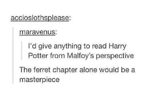 """Tumblr post that reads, """"I'd give anything to read Harry Potter from Malfoy's perspective - The ferret chapter alone would be a masterpiece"""""""