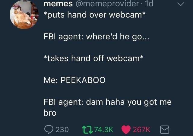 Text - memes @memeprovider 1d puts hand over webcam* FBI agent: where'd he go... *takes hand off webcam* Me: PEEKABO0 FBI agent: dam haha you got me bro 230 L74.3K 267K