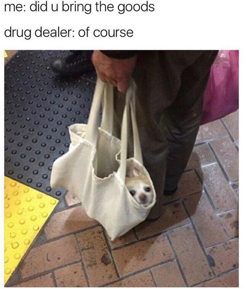 Photo caption - me: did u bring the goods drug dealer: of course