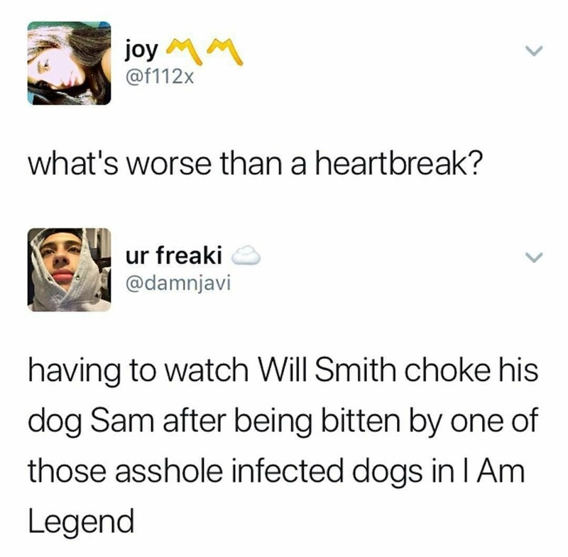 Text - joy M @f112x what's worse than a heartbreak? ur freaki @damnjavi having to watch Will Smith choke his dog Sam after being bitten by one of those asshole infected dogs in I Am Legend