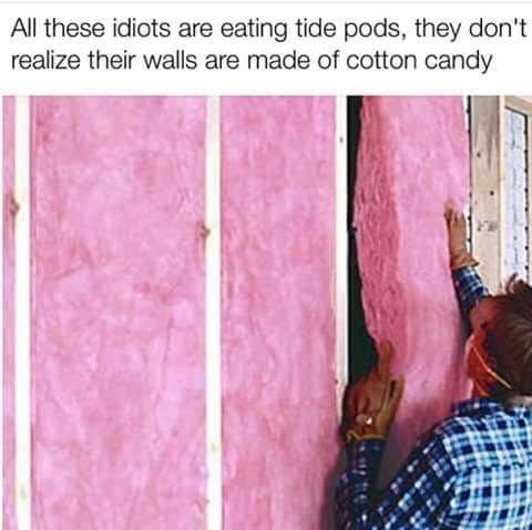 Pink - All these idiots are eating tide pods, they don't realize their walls are made of cotton candy