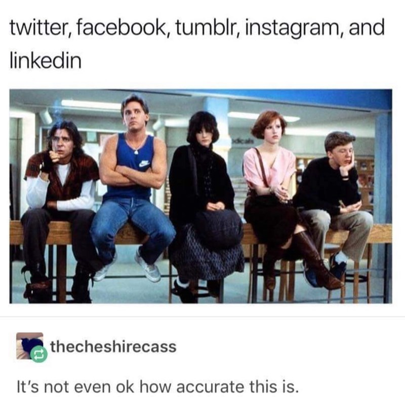 Text - Text - twitter, facebook, tumblr, instagram, and linkedin thecheshirecass It's not even ok how accurate this is.