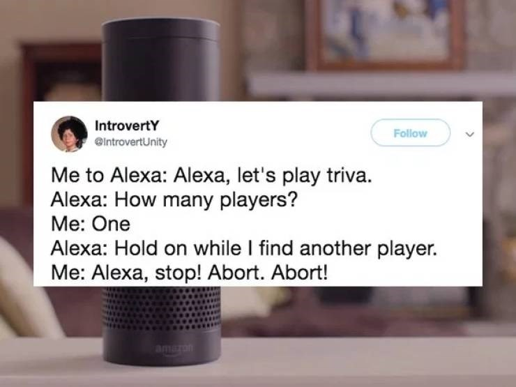 Product - IntrovertY Follow @IntrovertUnity Me to Alexa: Alexa, let's play triva Alexa: How many players? Me: One Alexa: Hold on while I find another player. Me: Alexa, stop! Abort. Abort! amn