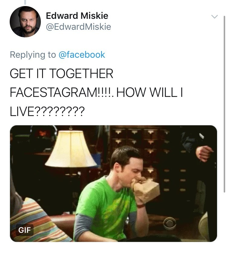 Font - Edward Miskie @EdwardMiskie Replying to @facebook GET IT TOGETHER FACESTAGRAM!!!! HOW WILL I LIVE???????? GIF