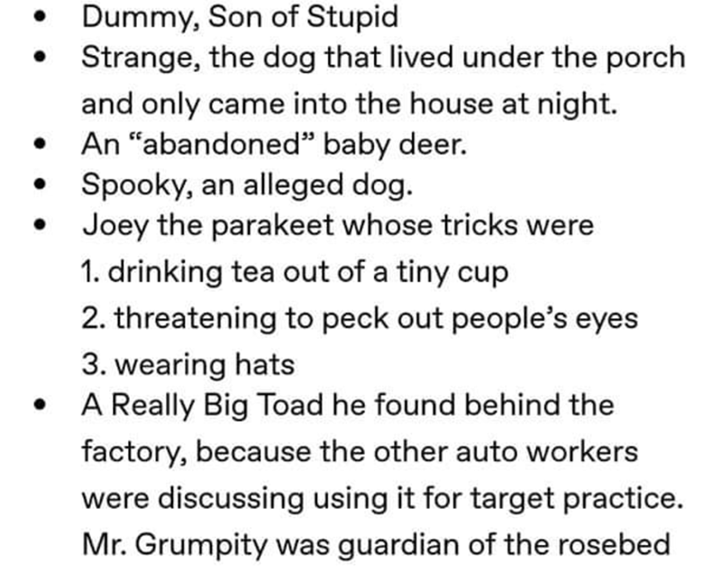 "Text - Dummy, Son of Stupid Strange, the dog that lived under the porch and only came into the house at night. An ""abandoned"" baby deer. Spooky, an alleged dog. Joey the parakeet whose tricks were 1. drinking tea out of a tiny cup 2. threatening to peck out people's eyes 3. wearing hats A Really Big Toad he found behind the factory, because the other auto workers were discussing using it for target practice. Mr. Grumpity was guardian of the rosebed"