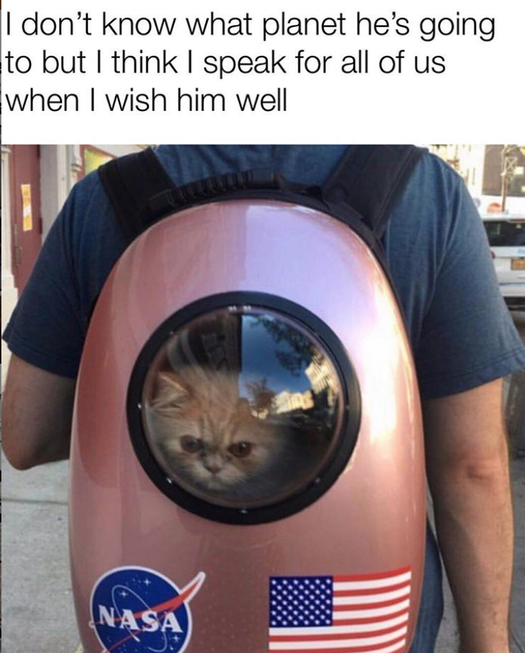 cat meme - Cat - I don't know what planet he's going to but I think I speak for all of us when I wish him well NASA