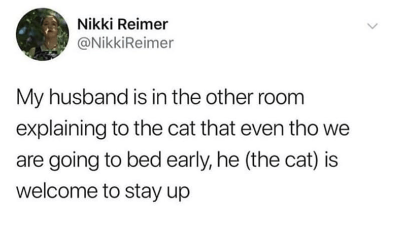 cat meme - Text - Nikki Reimer @NikkiReimer My husband is in the other room explaining to the cat that even tho we are going to bed early, he (the cat) is welcome to stay up
