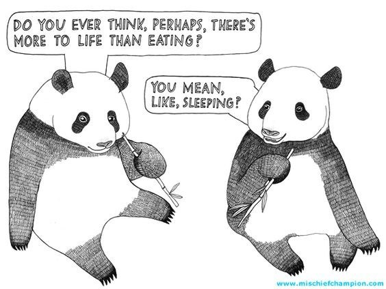Cartoon - DO YOU EVER THINK, PERHAPS, THERE'S MORE TO LIFE THAN EATING? YOU MEAN, LIKE, SLEEPING! www.mischiefchampion.com