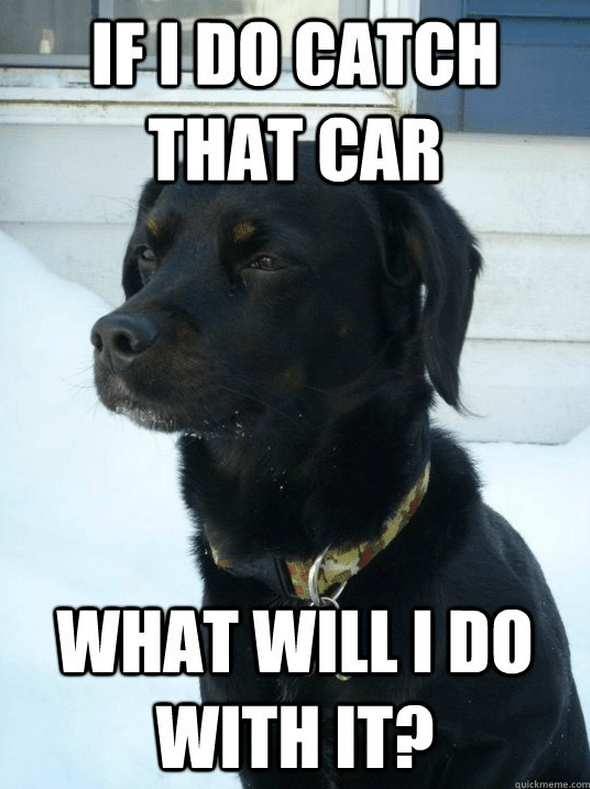 Dog - IFIDO CATCH THAT CAR WHAT WILLI DO WITH IT? quickmeme.com