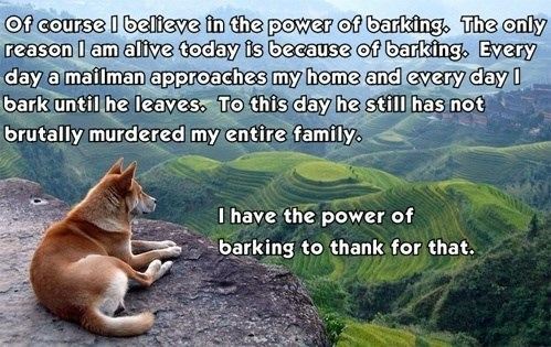 Adaptation - Of course I belteve in the power of barking, The only reason l am alive today is because of barking. Every day a mailman approaches my home and every dayI bark until he leaves, To this day he still has not brutally murdered my entire family I have the power of barking to thank for that.