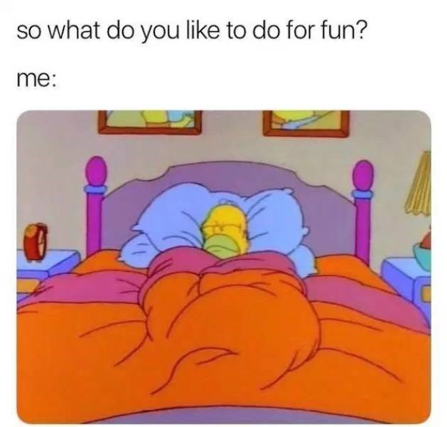 """Caption that reads, """"So what do you like to do for fun"""" Me: ..."""" above a pic of Homer Simpson sleeping in bed"""