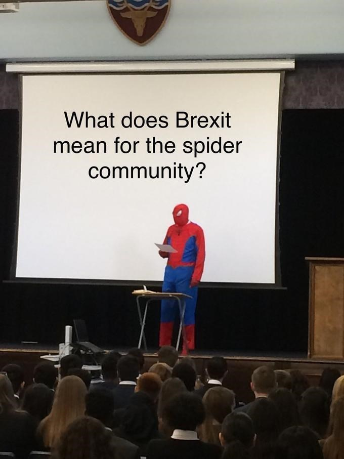 Text - What does Brexit mean for the spider community?