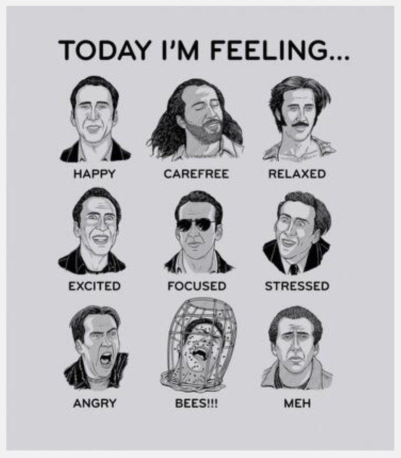Face - TODAY I'M FEELING... RELAXED CAREFREE HAPPY EXCITED FOCUSED STRESSED ANGRY BEES!! MEH