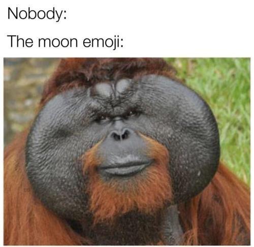 Orangutan - Nobody: The moon emoji: