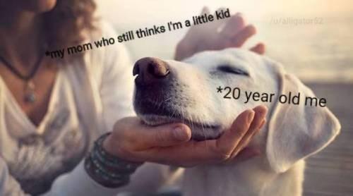 Dog breed - walligator my mom who still thinks I'm a little kid *20 year old me