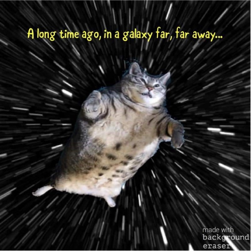 Cat - A long time ago, in a galaxy far, far away... made with background eraser