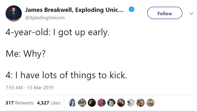 Text - James Breakwell, Exploding Unic... Follow @XplodingUnicorn 4-year-old: I got up early. Me: Why? 4: I have lots of things to kick. 15 Mar 2019 7:55 AM 317 Retweets 4,327 Likes