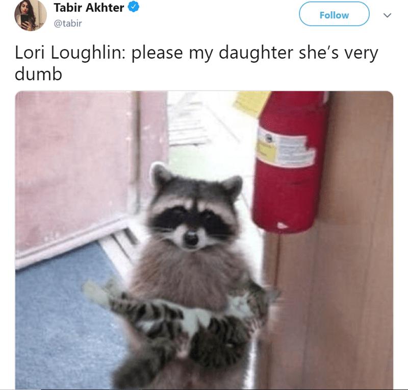 Text - Tabir Akhter Follow @tabir Lori Loughlin: please my daughter she's very dumb
