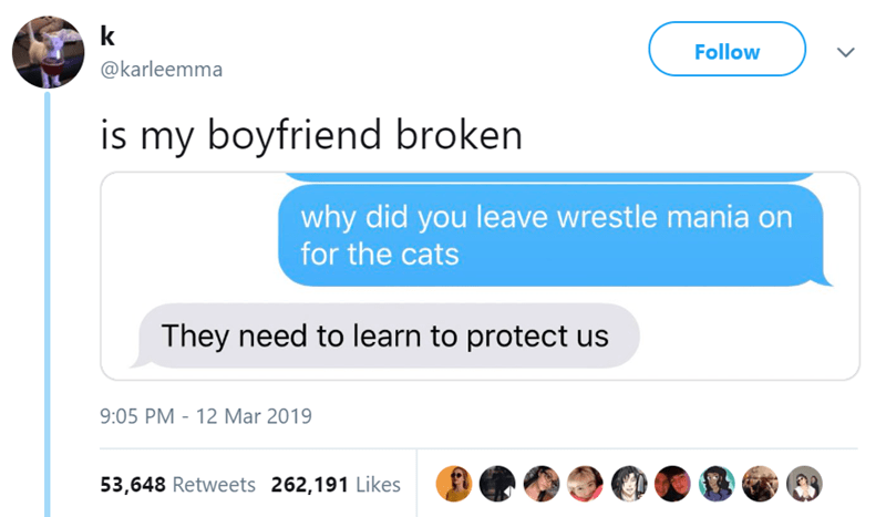 Text - k Follow @karleemma is my boyfriend broken why did you leave wrestle mania on for the cats They need to learn to protect 9:05 PM 12 Mar 2019 53,648 Retweets 262,191 Likes
