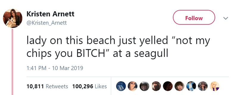 """Text - Kristen Arnett Follow @Kristen_Arnett lady on this beach just yelled """"not my chips you BITCH"""" at a seagull 1:41 PM 10 Mar 2019 10,811 Retweets 100,296 Likes"""