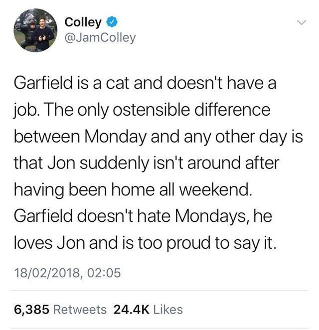 Text - Colley @JamColley Garfield is a cat and doesn't have a job. The only ostensible difference between Monday and any other day is that Jon suddenly isn't around after having been home all weekend. Garfield doesn't hate Mondays, he loves Jon and is too proud to say it. 18/02/2018, 02:05 6,385 Retweets 24.4K Likes