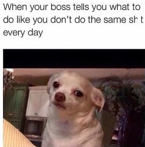 monday meme about doing the same work every day