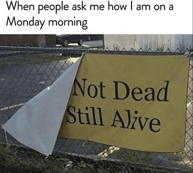 monday meme about feeling like dying on Monday