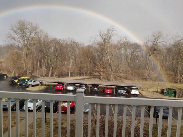 Rainbow - daa
