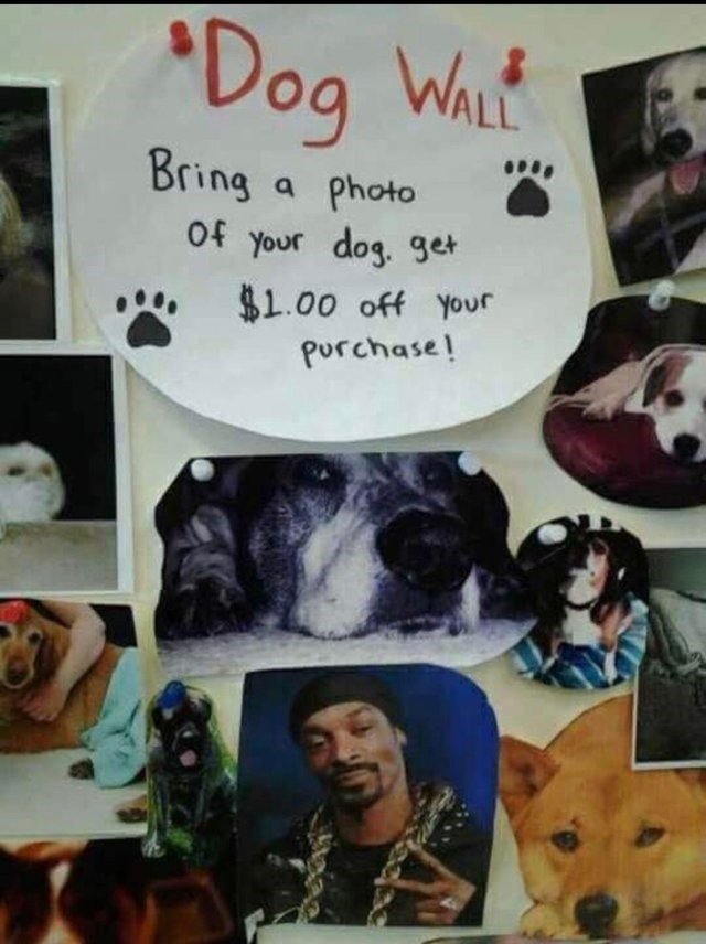 Art - Dog WhLt ALL Bring Photo of your dog. get $1.00 off your Purchase!