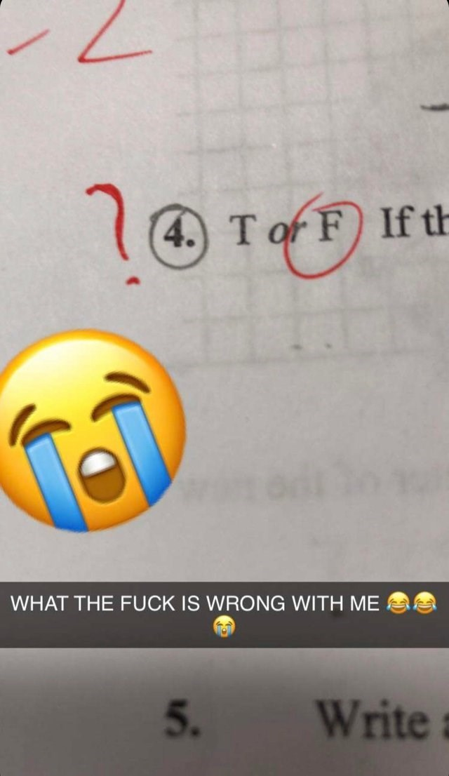 Text - (4. T of F) If th WHAT THE FUCK IS WRONG WITH ME 5. Write