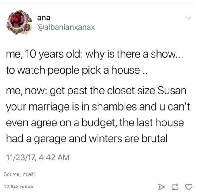 dumb meme about watching house hunters as a kid vs an adult