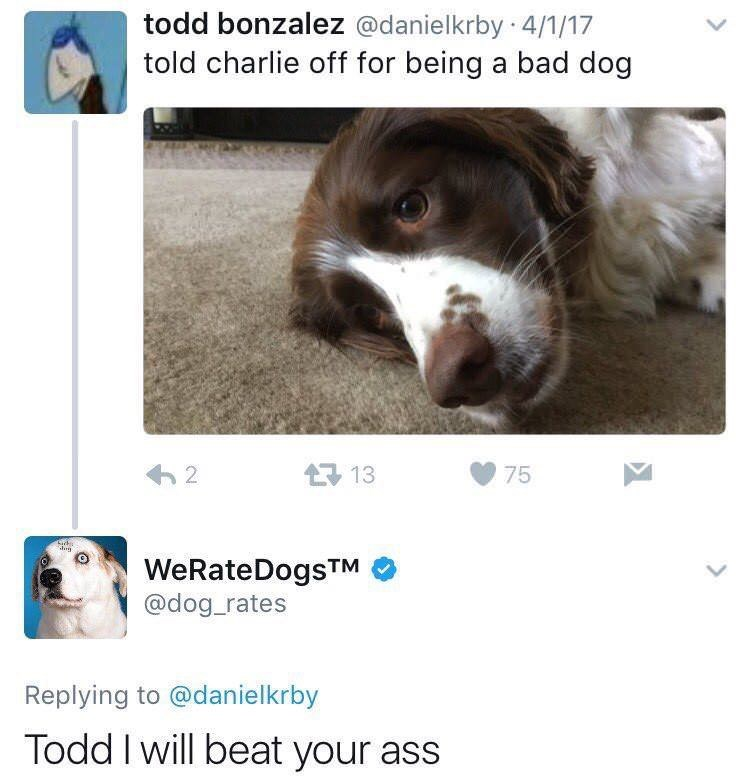 dumb meme about the weratedogs twitter account threatening people