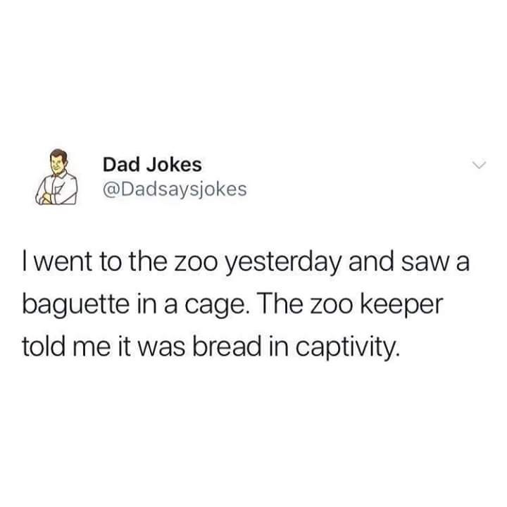 Text - Dad Jokes @Dadsaysjokes I went to the zoo yesterday and saw a baguette in a cage. The zoo keeper told me it was bread in captivity.