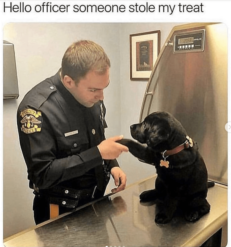 dog meme of a puppy shaking an officers hand