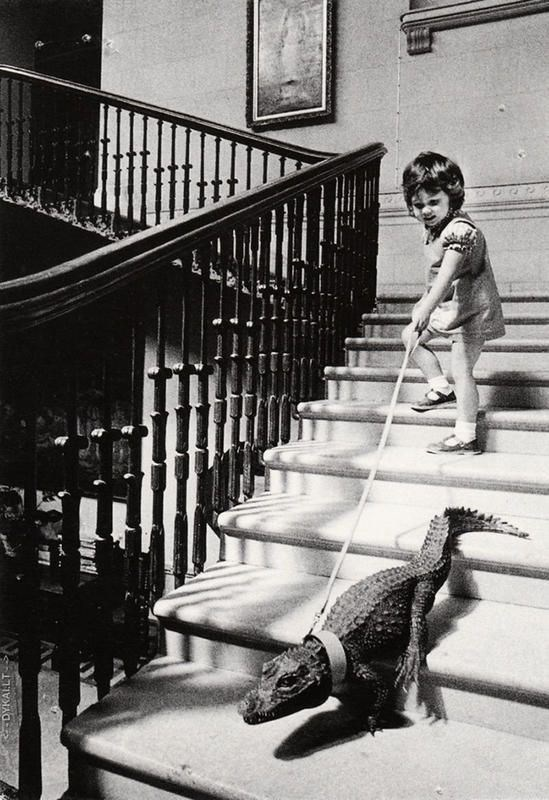 vintage kids and pets - Photograph - DYKALLT