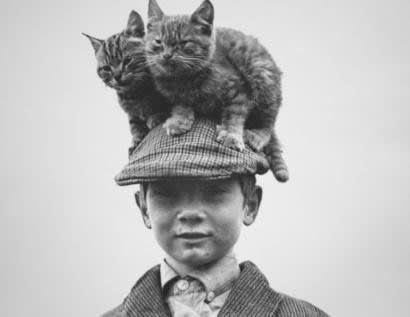 vintage kids and pets - Cat