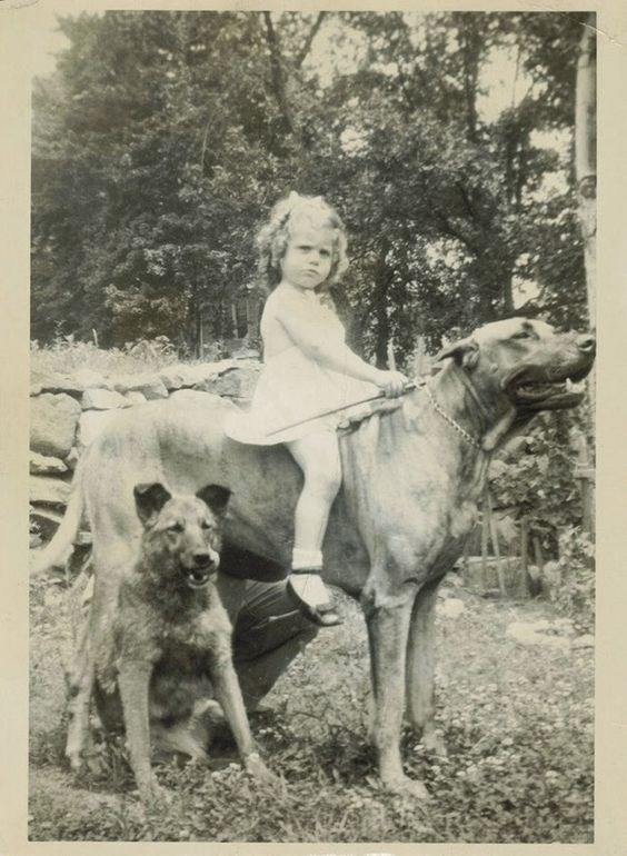 vintage kids and pets - Vertebrate